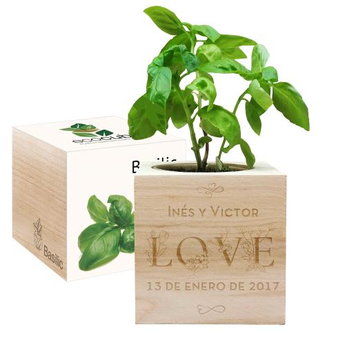 EcoCubo personalizado Amor