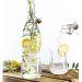 Botella en vidrio con tapón mecánico ilustración