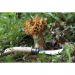 Cuchillo Opinel champiñón no 8