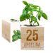 EcoCube personalizado cumpleaños