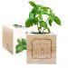 EcoCube personalizado marco de flores