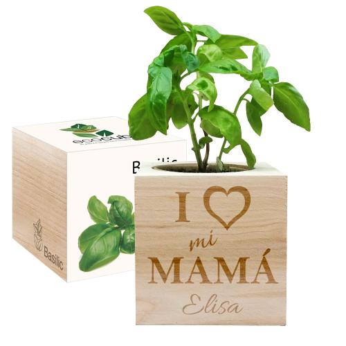 EcoCube personalizado mamá