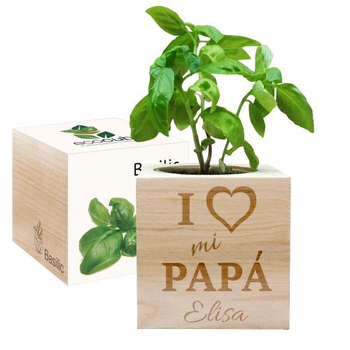Ecocube personalizado papá