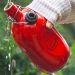 Botella personalizada roja cóncava Le Grand Tétras