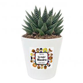 Planta personalizada Gracias Maestra